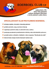 http://www.boerboelclub.cz/image.php?nid=12414&oid=3958329&width=684&height=960